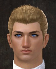 gw2-new-faces-festival-of-four-winds-human-male-3