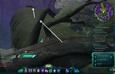 wildstar-tales-a-perfect-strike-3-wilderrun-zone-lore-guide