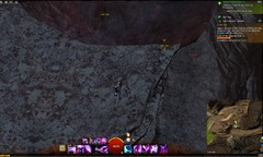 gw2-coin-collector-uplands-achievement-guide-53