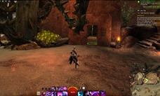 gw2-coin-collector-uplands-achievement