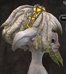 gw2-entanglement-hairstyles-asura-8
