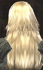 gw2-entanglement-hairstyles-norn-female-6