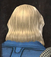 gw2-entanglement-hairstyles-norn-male-6
