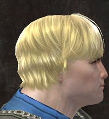 gw2-entanglement-hairstyles-norn-male-8