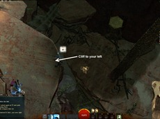 gw2-prospect-valley-jumping-puzzle-and-diving-goggle-guide-5