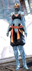 gw2-shadow-assassin-outfit-gemstore-human-female-4