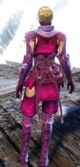 gw2-shadow-assassin-outfit-gemstore-norn-female-3