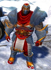 gw2-shadow-assassin-outfit-gemstore-norn-male