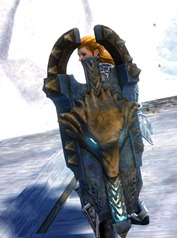 gw2-braham-shield-2