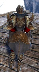 gw2-ceremonial-plated-outfit-3