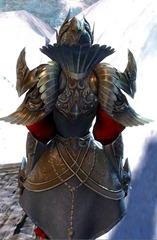gw2-ceremonial-plated-outfit-6