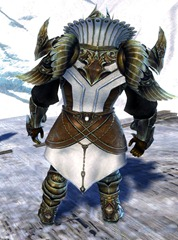 gw2-ceremonial-plated-outfit-sylvari-norn-male-3