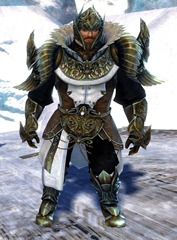 gw2-ceremonial-plated-outfit-sylvari-norn-male