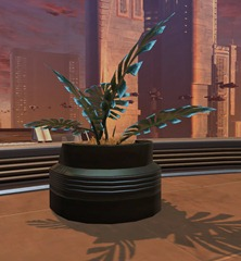 swtor-decorations-potted-plant-manaan-fern