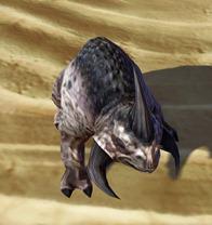 swtor-plaguehorn-reek-pet