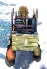gw2-elegant-huntsman's-backpack