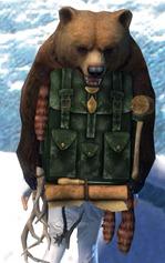 gw2-elegant-leatherworker's-backpack