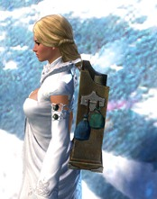 gw2-intricate-artificer's-backpack-2