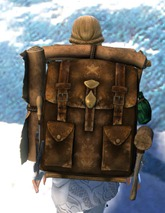 gw2-intricate-leatherworker's-backpack-2