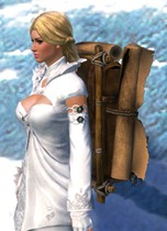 gw2-intricate-leatherworker's-backpack