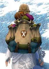 gw2-intricate-tailor's-backpack-2