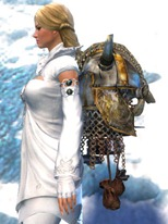 gw2-ornate-armorsmith's-backpack-2