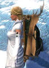 gw2-ornate-leatherworker's-backpack-2