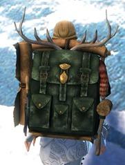 gw2-ornate-leatherworker's-backpack