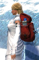 gw2-ornate-tailor's-backpack-2