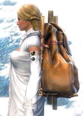 gw2-practical-huntsman's-backpack-2