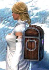 gw2-practical-jeweler's-backpack-2