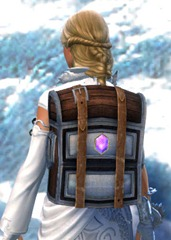 gw2-practical-jeweler's-backpack