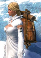 gw2-practical-leatherworker's-backpack-2