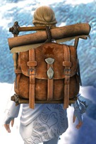 gw2-practical-leatherworker's-backpack