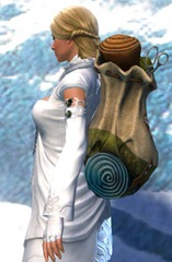 gw2-practical-tailor's-backpack-2
