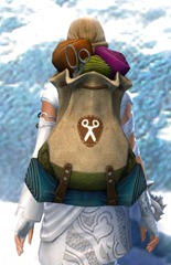 gw2-practical-tailor's-backpack