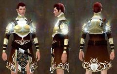 gw2-radiant-hauberk-medium-chest-male