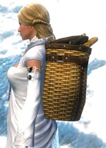 gw2-savory-chef's-backpack-2