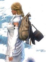 gw2-simple-chef's-backpack-2