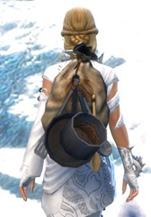 gw2-simple-chef's-backpack