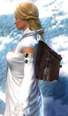 gw2-simple-jeweler's-backpack-2