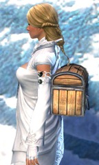 gw2-simple-weaponsmith's-backpack-2