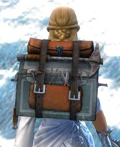 gw2-sturdy-armorsmith's-backpack