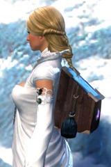 gw2-sturdy-jeweler's-backpack