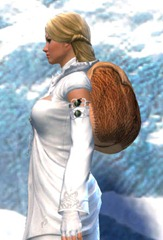 gw2-sturdy-leatherworker's-backpack-2