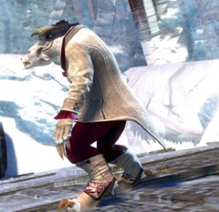 gw2-noble-count-outfit-charr-2