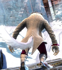 gw2-noble-count-outfit-charr-3