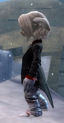 gw2-noble-count-outfit-human-asura-2