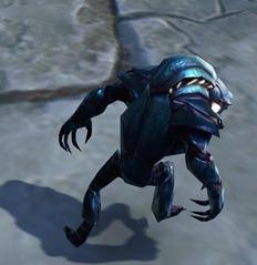 swtor-scarab-underwalker-pet-2