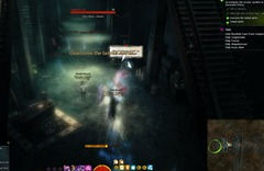 gw2-it's-all-about-timing-arcana-obscura-achievements-2